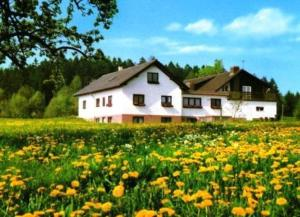 Gasthaus-Pension Zum Brandweiher