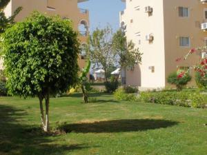 Dream Away Luxor, Apartmány  Al MarÄ«s - big - 10