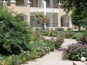 Dream Away Luxor, Apartmány  Al MarÄ«s - big - 16