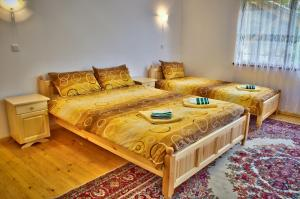 Guest House JoJi, Pensionen  Saparewa Banja - big - 45