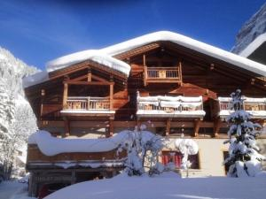 Appartement Du Dou Des Ponts - Apartment - Pralognan la Vanoise