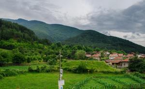 Guest House JoJi, Pensionen  Saparewa Banja - big - 25