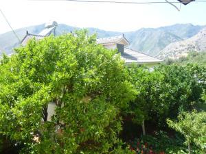 Vila Altini Borsh, Apartmanok  Borsh - big - 26