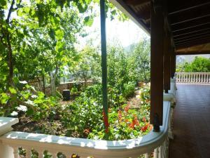 Vila Altini Borsh, Apartmanok  Borsh - big - 103