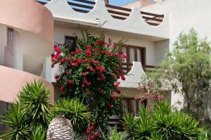 Apartamentos Estanques, Apartmány  Colonia Sant Jordi - big - 36