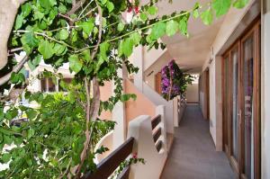 Apartamentos Estanques, Apartmány  Colonia Sant Jordi - big - 37