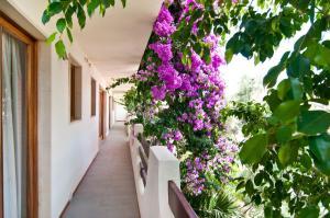 Apartamentos Estanques, Apartmány  Colonia Sant Jordi - big - 34