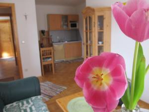 Weingut Dietl, Апартаменты  Ригерсбург - big - 50