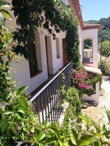 Apartamento Rural Las Palmeras, Country houses  Almonaster la Real - big - 17