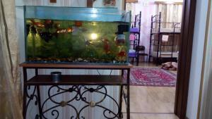 California Guest House, Penzióny  Gori - big - 50