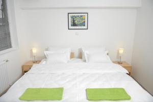 Bed and Breakfast Park GM 032 - Accommodation - Gornji Milanovac
