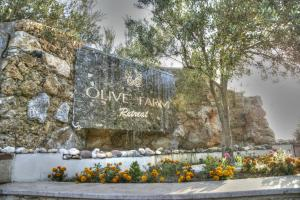 The Olive Farm Guest House (32 of 68)