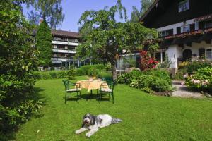Garden-Hotel Reinhart, Szállodák  Prien am Chiemsee - big - 37