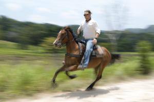Mountain Equestrian Trails