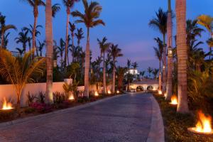 One&Only Palmilla (8 of 131)