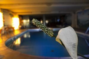 Hotel La Palma Romantica (40 of 62)