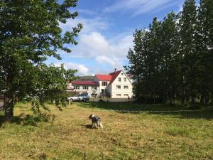 Reykjahlíð Mosfellsbær - Apartment