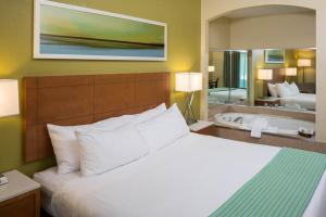 Holiday Inn Express - Clermont - Winter Garden