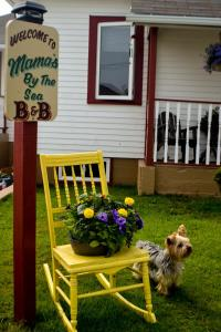 Mama`s By The Sea B&B, Bed and Breakfasts  Clark's Harbour - big - 44