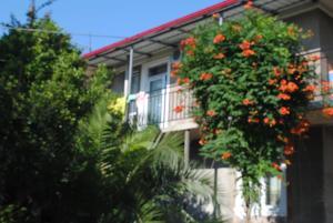 Гостевой дом Гига, Махинджаури