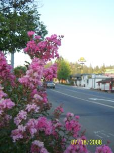 Gold Country Inn, Motel  Placerville - big - 26