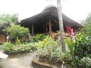 Bali Lovina Beach Cottages, Hotel  Lovina - big - 55