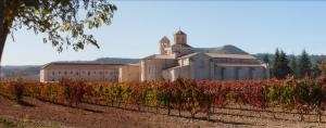 Hotel Castilla Termal Monasterio de Valbuena - Valbuena de Duero