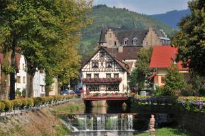 Hotel Restaurant Rebstock - Lierbach
