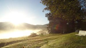 Pousada Canto do Lago, Гостевые дома  Пиракая - big - 80