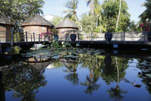 Nika Island Resort & Spa, Maldives, Курортные отели  Остров Ника - big - 119