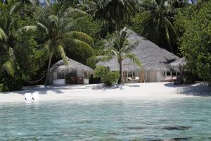 Nika Island Resort & Spa, Maldives, Курортные отели  Остров Ника - big - 88