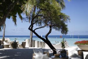 Nika Island Resort & Spa, Maldives, Курортные отели  Остров Ника - big - 82