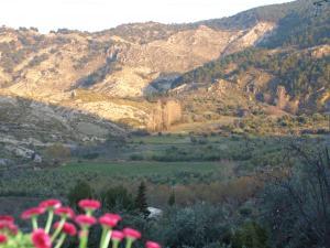 La Almunia del Valle (7 of 53)