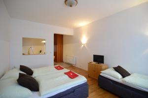 Apartments Karlin - Prague