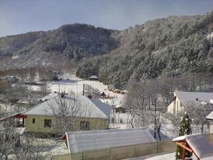 Casa Domneasca, Lodges  Baia de Fier - big - 46