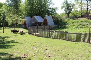 Turbaza Svetlyachok, Farmy  Gornyy - big - 36