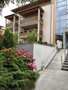 Sosnowy Apartament