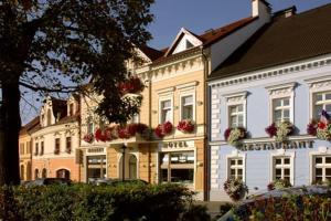 Auberges de jeunesse - Hotel Restaurant Modrá Hvězda
