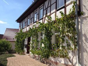 Ferienhaus Borntal - Breitungen