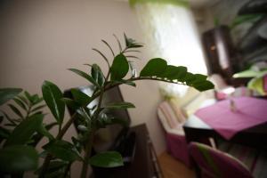 Hotel Voyage Park, Hotely  Moskva - big - 46