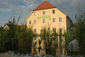 ad vineas Gästehaus Nikolaihof-Hotel Garni, Отели  Маутерн - big - 29