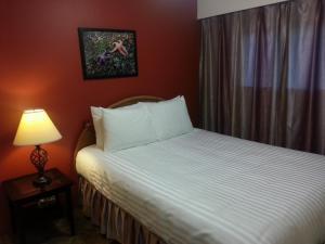 Edgewater Motel - Accommodation - Oyster Bay