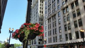 Pittsfield Apartments + Suites..