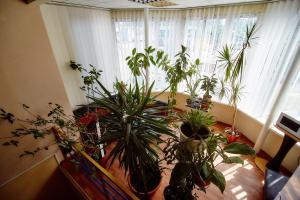 Отель ЛаМа2 , Отели  Киев - big - 67