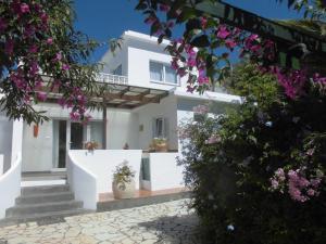 Casa Mango, Los Llanos de Aridane (La Palma) - La Palma
