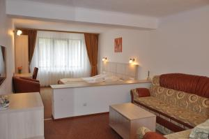 Cabana Claris - Hotel - Văliug