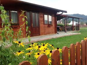 Pensiunea Gentiana - Accommodation - Vatra Dornei