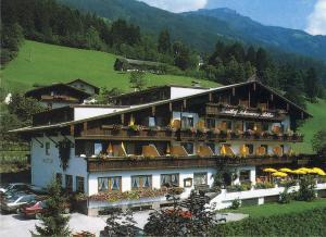 Hotel Schwarzer Adler - Hippach