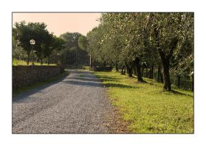 B&B Casale Virgili, Bed & Breakfast  Siena - big - 27