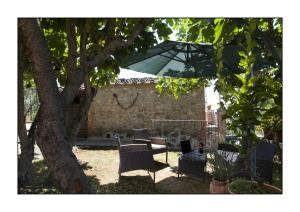 B&B Casale Virgili, Bed & Breakfast  Siena - big - 51